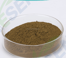 Forsythia fructus extract/ Forsythia suspensa extract