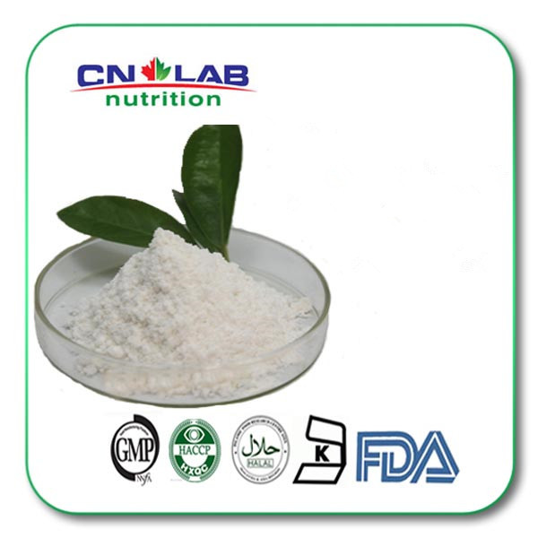 Manufacturer Supply Fungal Cellulase/Trichoderma Viride/Cellulase Powder