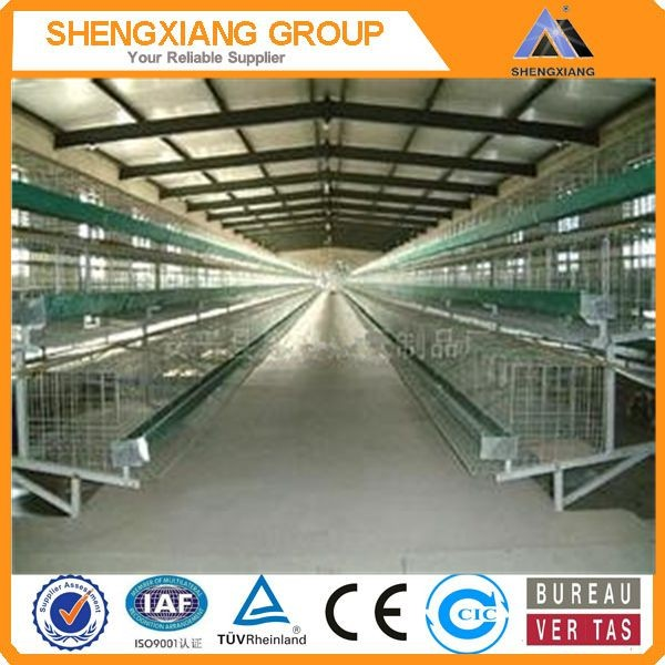 Alibaba China supplier anping county hight Quality Animal Cages wire mesh quail cage distributor