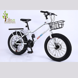 20 Inch teenager Cycle/ Wholesale Kids Bike steel frame//New Model Children Bicycle with Competitive Price /