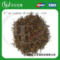 Lyphar Supply Black Tea Extract