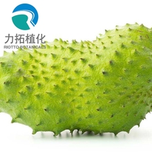Best quality & competitive price 100% nature graviola fruit extract