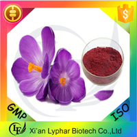 GMP Factory Provide Competitive Iranian Saffron Price