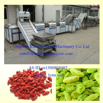 automatic Dried Raisin Washing machine/fruit washing machine