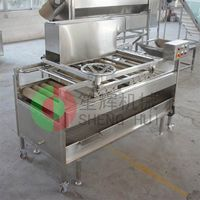 new functional full automatic tomatoes washer QM-2