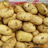 2016 top grade fresh potato with high starch percentage for making French fries