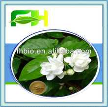 Natural Herb Jasmine Extract