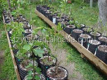 Hydroponic growing system of plastic Grow nursery pots
