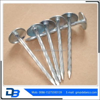Iron Head Factory Twist Shank Umbrella Roofing Nail
