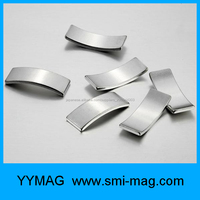 Neodymium magnet for motor/Arc Neodymium Magnets/permanent magnet motor