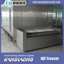High Quality Cold Plate Freezer Sale