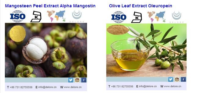 high quality 100% natural organic vine tea extract dmy