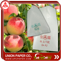 Succulent protection bag Grow Bags For Fruit