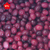 2017 New crop Best price IQF Frozen cranberry for sale
