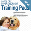 clean pet sheet puppie traing pad dog pad for japan