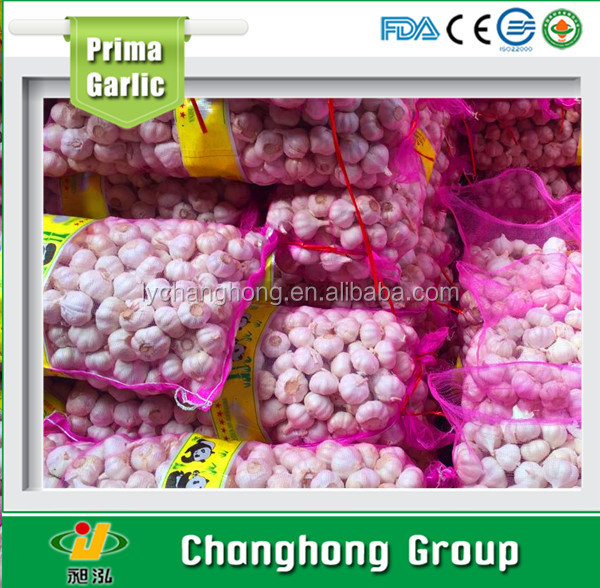 Hot sale best quality fresh garlic 2017