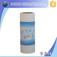 New Fashion Breathable Material Polyethylene Backsheet