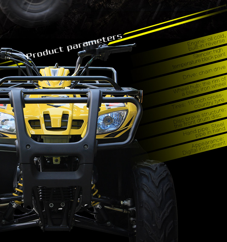 Classic design 180CC 200CC automatic ATV for Tourism