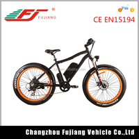 FJ-TDE07, 1000w mid motor electric bike