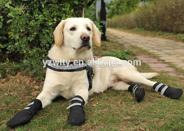 High quality cheap price waterproof dog shoes
