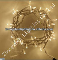 100 LED 10m Indoor Outdoor Warm White LED Fairy Lights