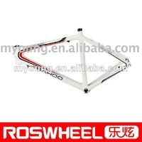 Bicycle carbon Frame