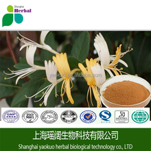 honeysuckle Flowers Extract/ Lonicera japonica Thunb/ CAS NO.: 327-97-9