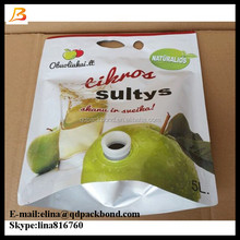 Customized Best-Selling 5 Liter Apple Juice Bag In Box