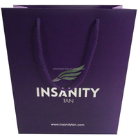 Fashionable Printed Top Quality Shopping Paper Bags With Your Own Logo
