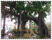 Wholesale 3 metres high 60cm diameters banyan tree,artificial plants wholesale,decorative tree bark,fake plant