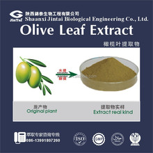 Free sample olive leaf extract 20% 40% Oleuropein