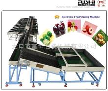 Hot Sell Elaborate Fruit Calibrate machine