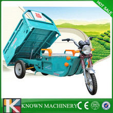 Hot sale in Asica market cabin cargo tricycle,cargo tricycle on sale