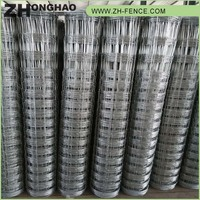 High Quality PVC coated Wholesale clear panel fence panels