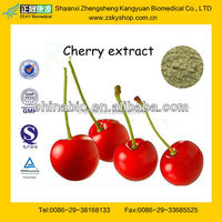 GMP Factory Supply Acerola Cherry Extract Powder