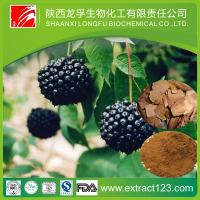 Alibaba China Supply Siberian Ginseng Extract