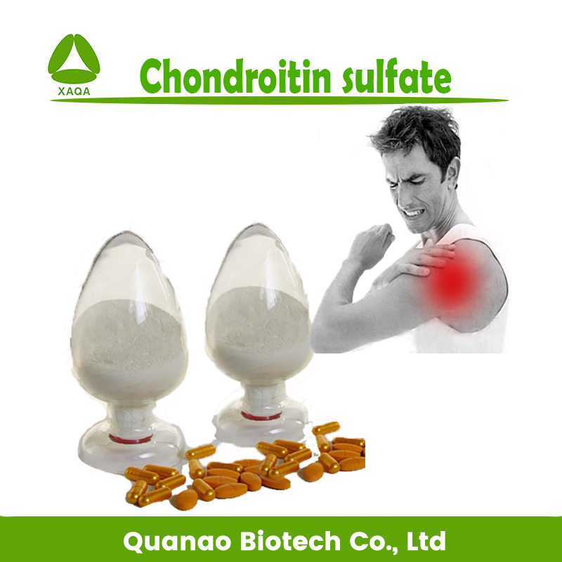Top quality Chondroitin sulfate powder 50% 90% for arthritis product