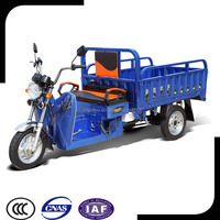 110cc and 1000W Hybrid Cargo Tricycle / Three Wheel Motorcycle