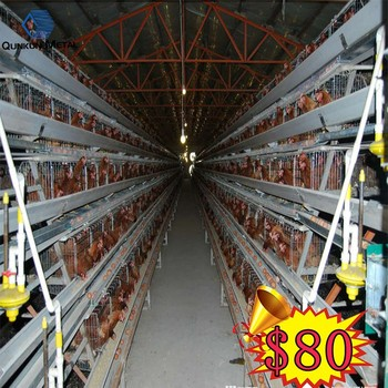120 birds and 160 birds a type sale cages for laying hen