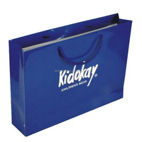custom paper bag , recyclable paper bag , paper bag with logo print