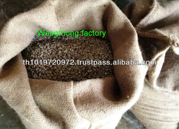 Green Arabica Coffee Bean Premium Quality