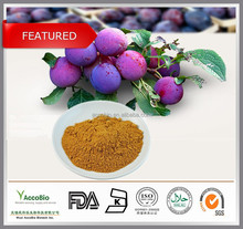 100% Natural Prune extract,Plum extract, Prune extract powder 10:1