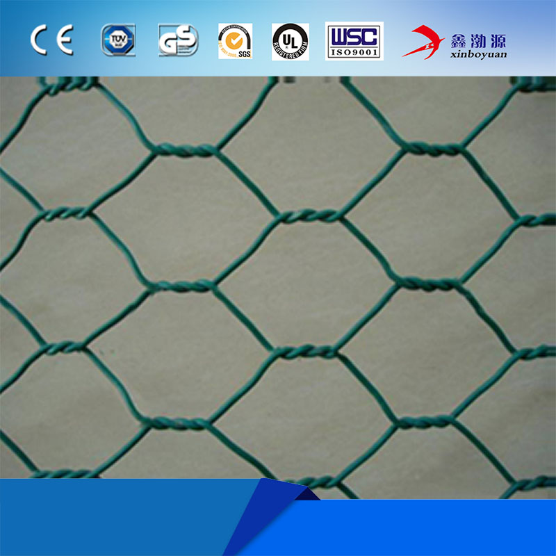 Hot Sale Anping Hexagonal Mesh For Gabion Fence (Leading Factory)