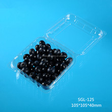 Blister 125g Plastic Blueberry Packing Punnet with Vent Hole