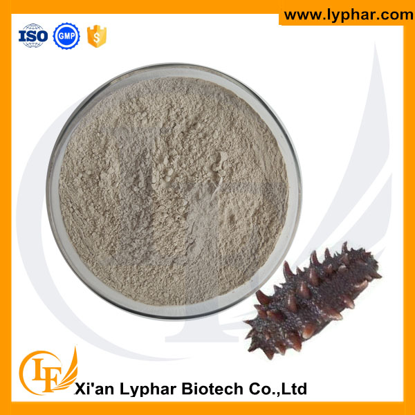 Wholesale High Quality Sea Cucumber Extract