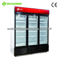 -25 Celsius Upright Ice Cream Display Freezer/Glass Door Deep Freezer