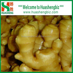 China fresh ginger/half dry ginger/semi dry ginger/air dried ginger with good prices