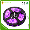 china supplier led light strip wholesale strips light dimmable led strip 5050
