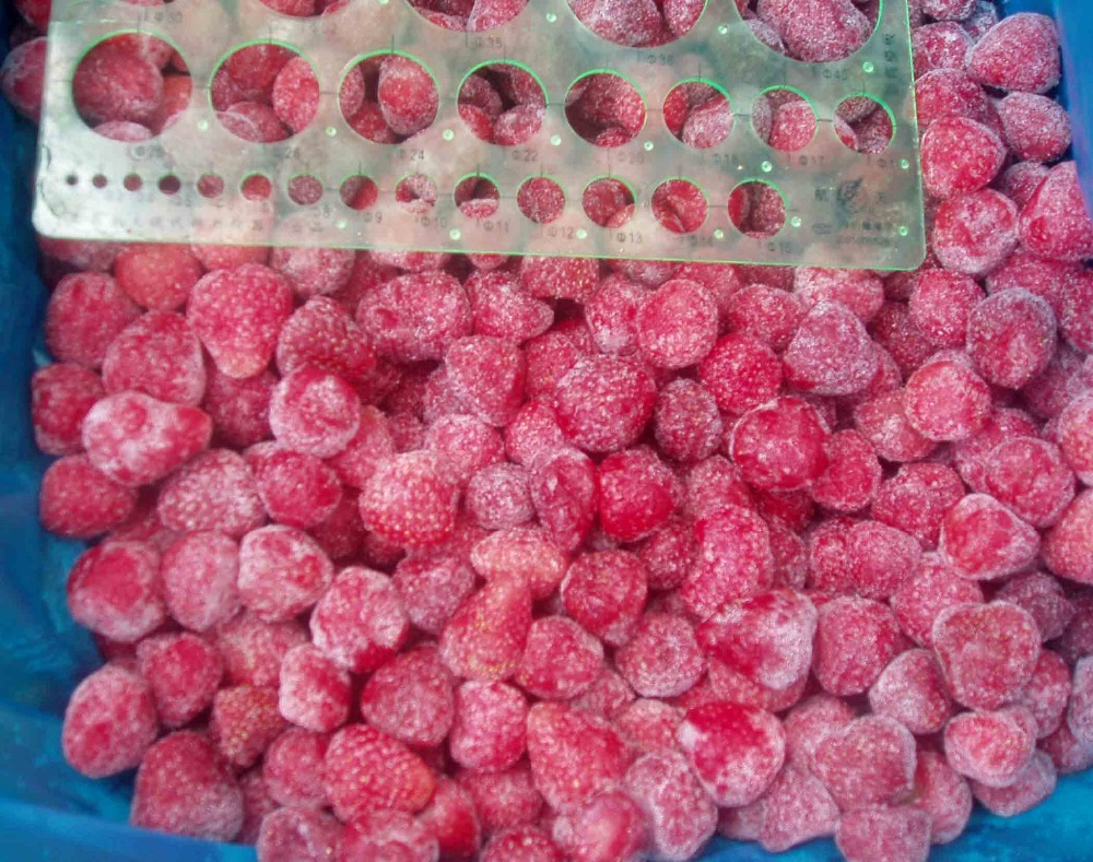 Vegetable product frozen food IQF strawberry in China