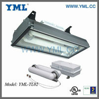 UL, ETL,CE,ROHS High Power Induction Long Life-span 200W,400W Plant Grow light